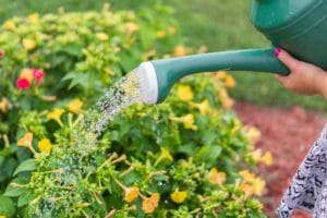 Ways To Save Water At Home in Burnaby CA